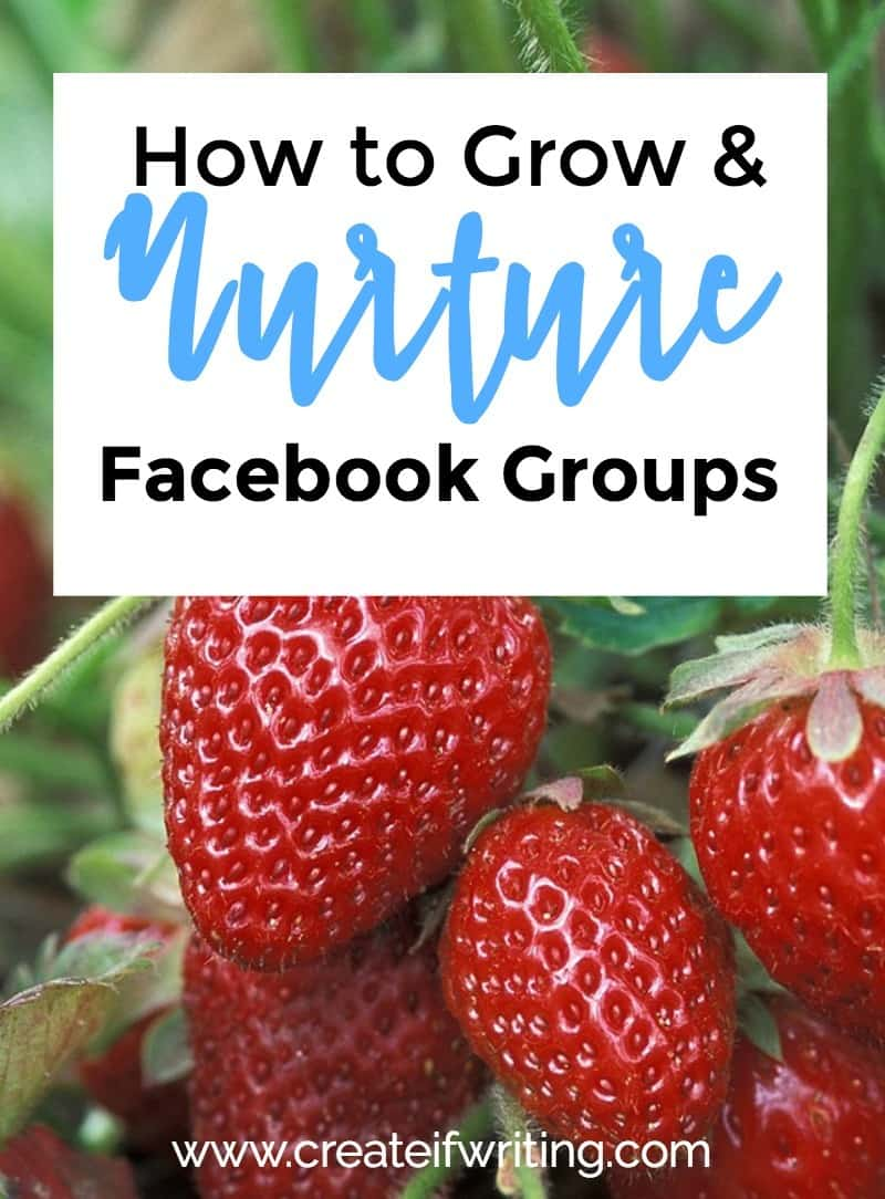 Are you trying to grow a Facebook group, but hear crickets when you post? Learn how to grow and nurture a Facebook group. Hint: it's not ALL about the numbers.